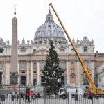 Papa: presépio e árvore de Natal formam mensagem de esperança